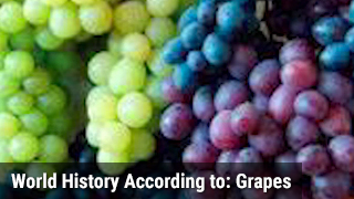 World History According to: Grapes